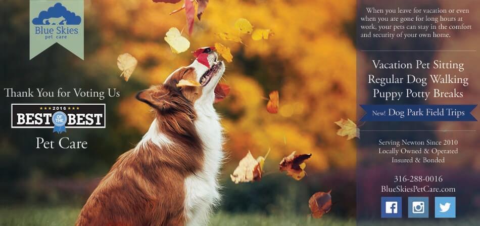 Best of the Best Pet Care Winner in Newton, KS